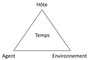 Le triangle épidémiologique