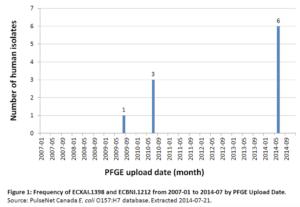 PFGE frequency