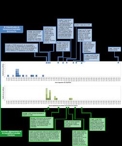 Chronologie visuelle