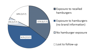 Final Epi Summary - Pie Graph of Exposure Sources