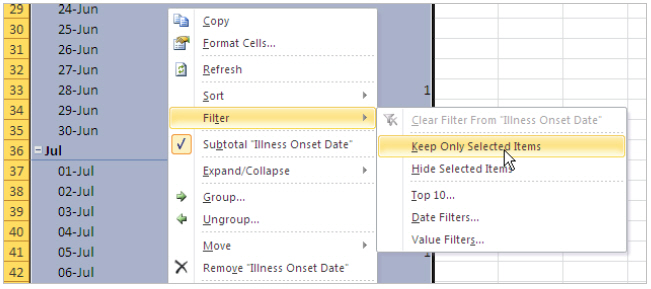 Excel screen caption