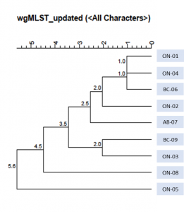 Text description: WGS tree illustrating genetic relatedness of nine cases. Cases are all genetically related by 0-5.6 wgMLST allele differences.